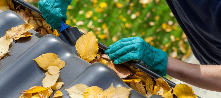 gutter cleaning guide