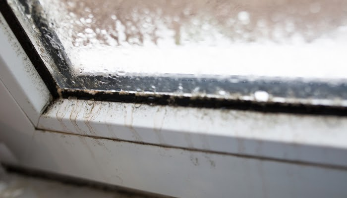 signs you need new window frames