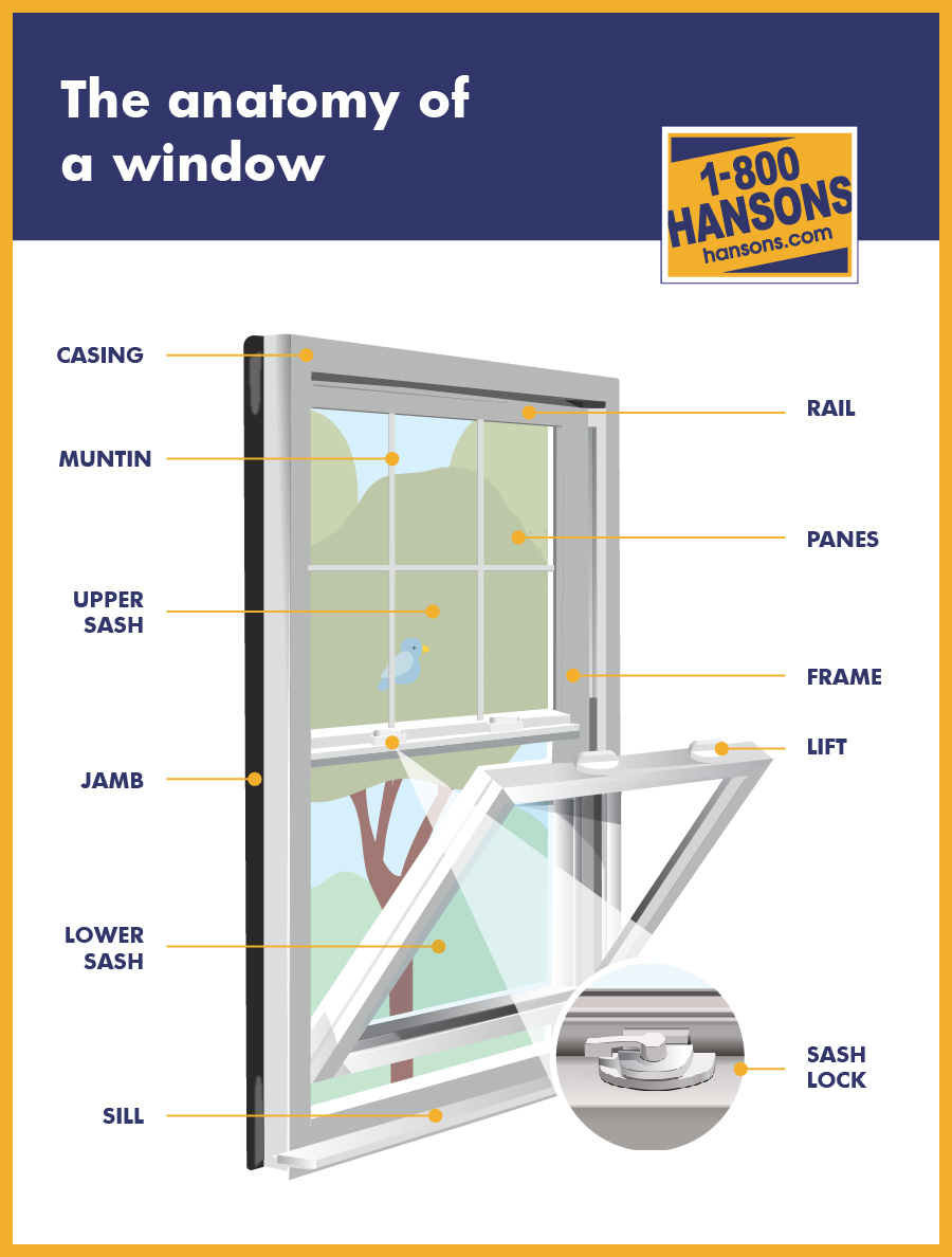 Replacement Window Infographic