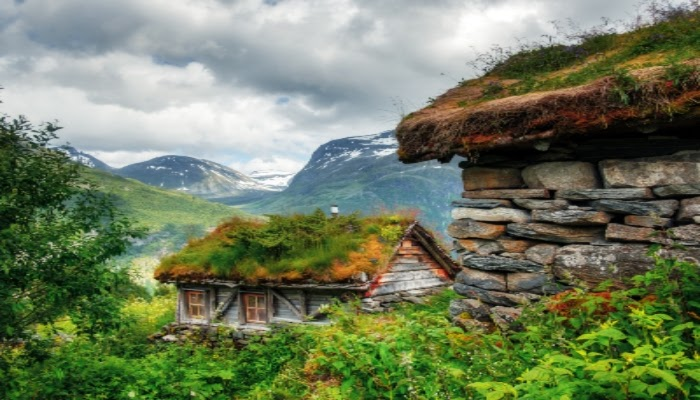cool and green roofs